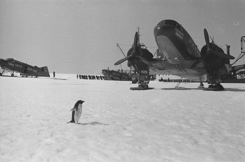 Антарктическая станция «Мирный»