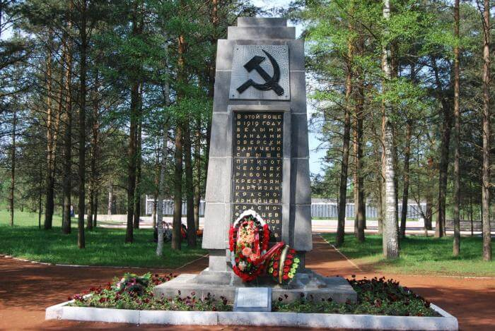 5 августа 1919 г. красные заняли уездный город Петроградской губернии Ямбург