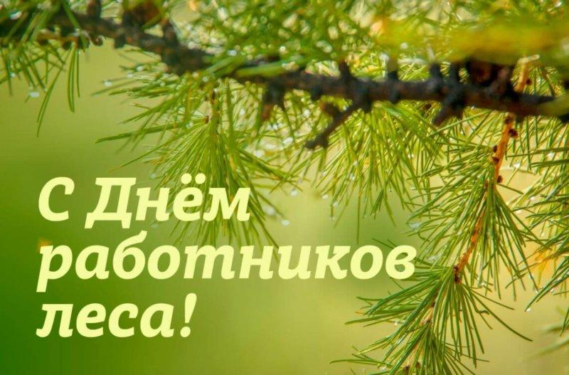 День работников леса и лесоперерабатывающей промышленности